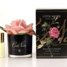 Cote Noire Perfumed rose Cherry Blossom Pink