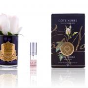 Cote Noire Rose Bud Blush