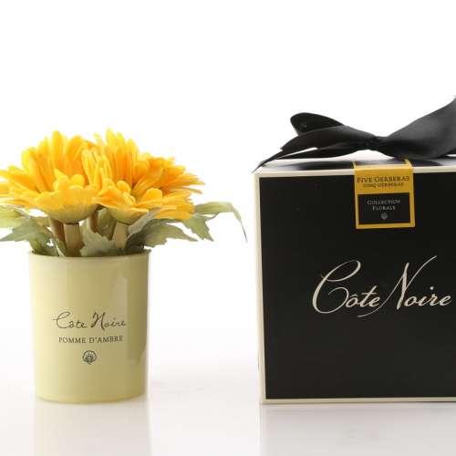 Cote Noire Perfumed Gerberas Yellow